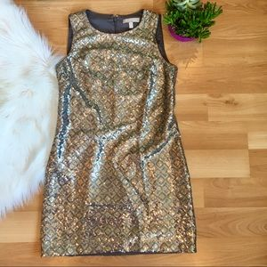 Banana Republic silver sequin sleeveless dress